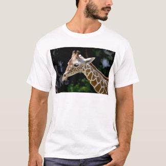 Camiseta Girafa de Brown durante o dia