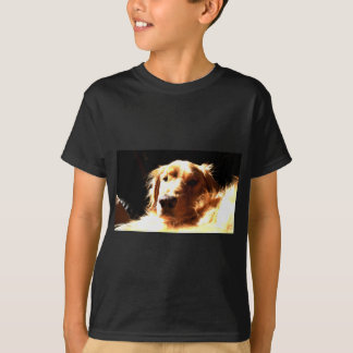 Camiseta Golden retriever na luz solar