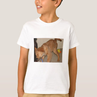 Camiseta Golden retriever que agita o fora
