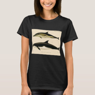 Camiseta Golfinhos do vintage, animais marinhos e mamíferos