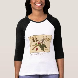 Camiseta Goma-arábica do Coffea
