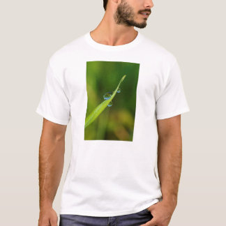 Camiseta Gotas de água em uma lâmina de grama verde