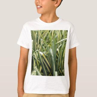 Camiseta Grama Variegated do carriço