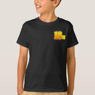 Camiseta Harbaugh AJ 2012