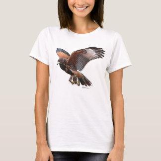 Camiseta Harris Hawk em vôo