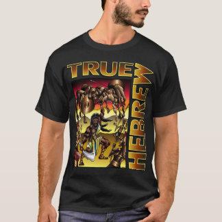 Camiseta Hebraico verdadeiro (Samson)