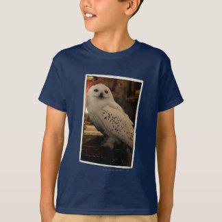Camiseta Hedwig 3