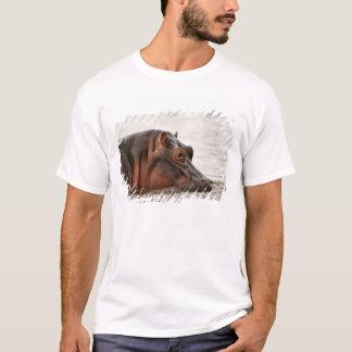 Camiseta Hippopotamus, amphibius do Hippopotamus, lago
