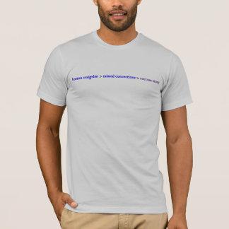 Camiseta História de sucesso faltada das conexões