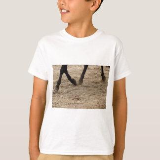 Camiseta Horse hooves