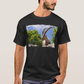 Camiseta Íbex alpino do close up