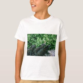 Camiseta Iguanas marinhas