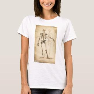 Camiseta Ilustração do vintage do esqueleto humano
