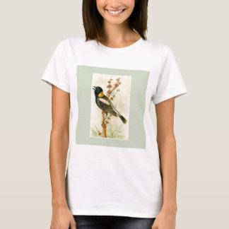 Camiseta Impressão do pássaro do vintage - Bobolink