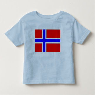 Camiseta Infantil Bandeira de Noruega
