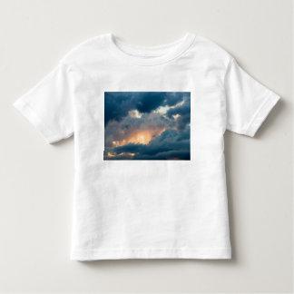 Camiseta Infantil de volta à mostra adiantada