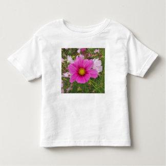 Camiseta Infantil Flor cor-de-rosa bonito do cosmos