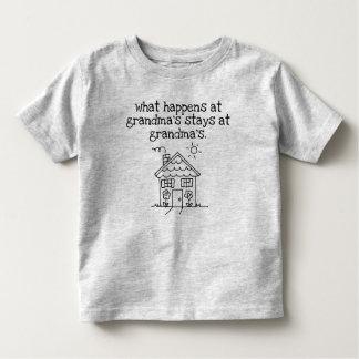 Camiseta Infantil meu lugar favorito é a casa da avó