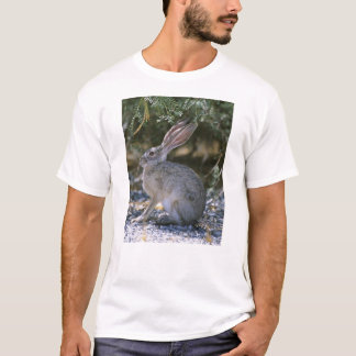 Camiseta Jackrabbit de cauda negra