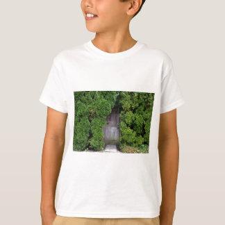 Camiseta Jardim secreto 2