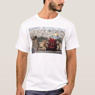 Camiseta Jerusalem, mundo dos colos, cidade santa