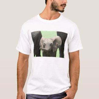 Camiseta Kenya:  Reserva do jogo de Mara do Masai