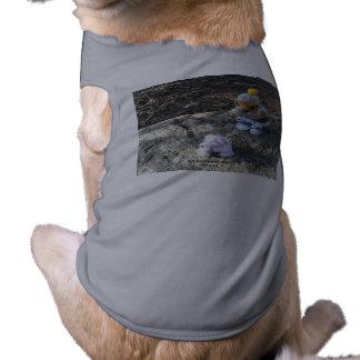 Camiseta Ker'Dunkedunk e o deeOHgee vão para uma caminhada!