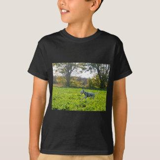 Camiseta Kevin o Dalmatian