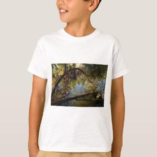 Camiseta Lago 4 park da garganta de Franklin