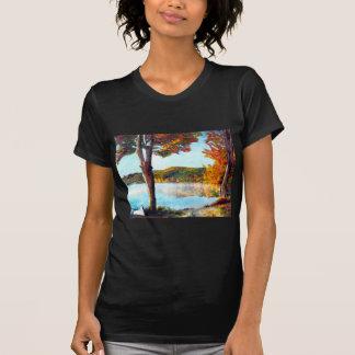 Camiseta Lago Champlain