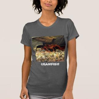 Camiseta Lagostins de Missouri