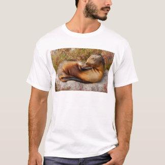 Camiseta Leão de mar de Galápagos