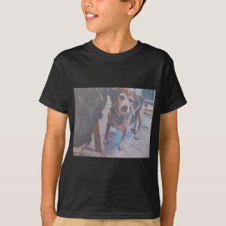 Camiseta Lebreiro curioso