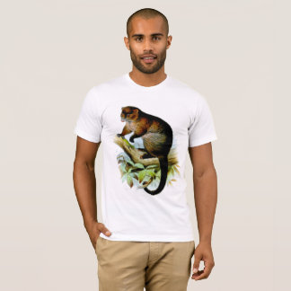 Camiseta Lemur-como o gambá do ringtail