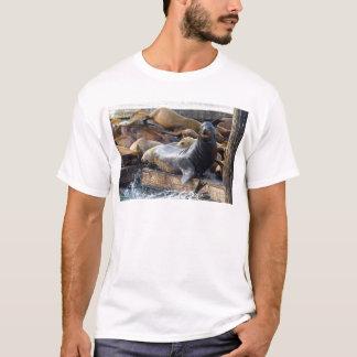 Camiseta Leões de mar na doca de flutuação em San Francisco