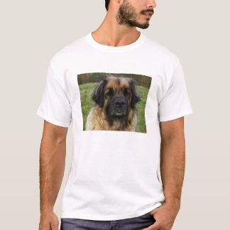 Camiseta leonberger 2.png