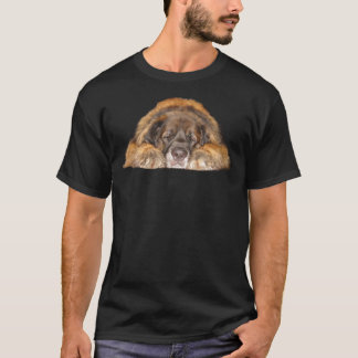 Camiseta Leonberger sonolento