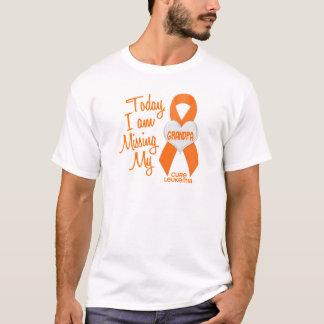 Camiseta Leucemia que falta meu vovô 1
