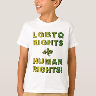 CAMISETA LGBTQ ENDIREITA…