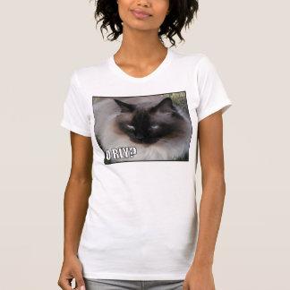 Camiseta LOLCat 4
