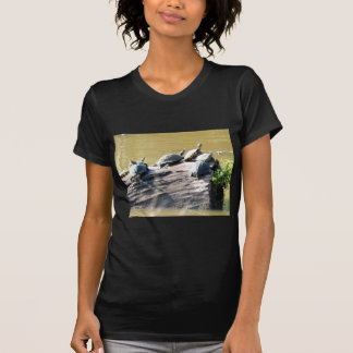 Camiseta LSU Turtles.JPG