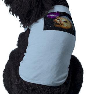 Camiseta lua do gato, gato e lua, catmoon, gato da lua