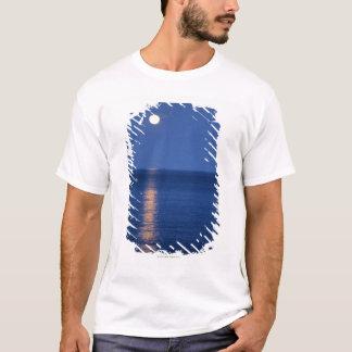 Camiseta Lua sobre o lago na noite