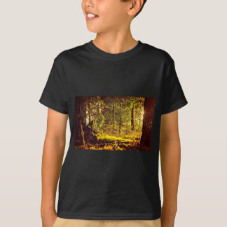 Camiseta Luz na floresta