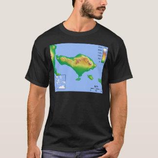 Camiseta Mapa de Bali