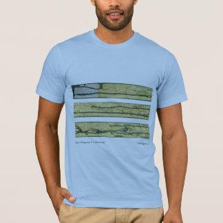 Camiseta Mapa de estradas romano