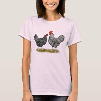 Camiseta Marans:  Pares do cuco