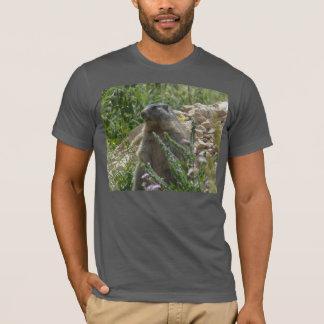 Camiseta Marmota alpina que senta para baixo o t-shirt