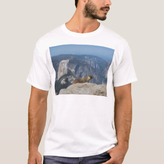 Camiseta Marmota que negligencia a meia abóbada do resto