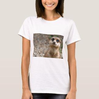 Camiseta Meerkat Grande-Eyed bonito